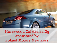 Horeswood Coiste na nOg sponsored by Boland Motors New Ross