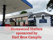 Horeswood Hurlers sponsored by Hart Bros